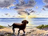 Dachshund Sunset Dog Art Print By Artist Dj Rogers
