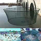 yeehao Faltbar Drop Netz Kescher Garnele Köder Krabbe Schrimps Kai Harbour Teich Netzgewebe - Beige, 80cm