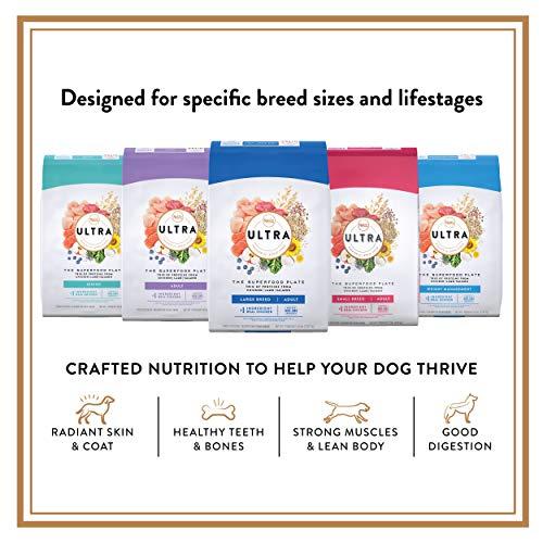 Nutro-Ultra-Proteins-Chicken-Salmon