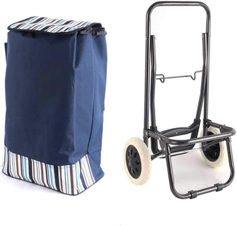 Shopping Max 90% OFF trolleys Portable Folding Luggage Fort Worth Mall Sma cart Bag