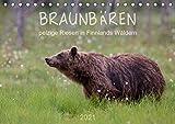 Braunbären - pelzige Riesen in Finnlands Wäldern (Tischkalender 2021 DIN A5 quer)