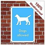 Señal de información con el símbolo de perros permitidos INF21 duradera y resistente a la intemperie