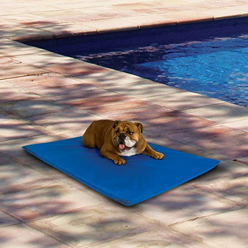 K&H Pet Products Cool Bed III Cooling Dog Bed Medium Blue 22' x 32'