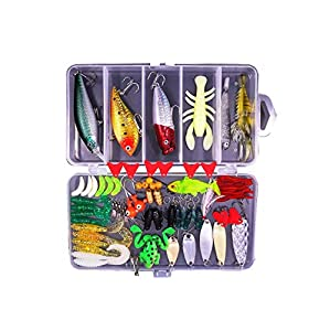 77pcs Artificial Fishing Bait Set, Bait Fishing Tackle.Including CrankBait,Jigs,Topwater Lures and More Fishing Gear Lures Kit Set ?with A Free Tackle Box?.