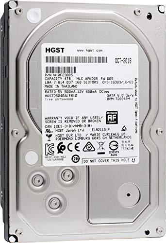 HGST Ultrastar 7K6000 HUS726040ALE610 (0F23005) 4 TB 7200 RPM SATA 6Gb/s 3.5-Inch Internal Hard Drive (Renewed)