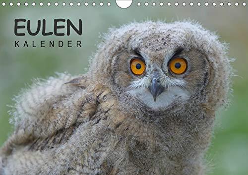 Eulen-Kalender (Wandkalender 2021 DIN A4 quer)