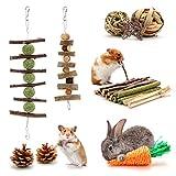 Mengxin Juguetes para Masticar Pequeños Animales Hamster Juguetes para Morder...