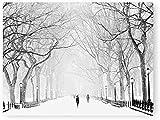 Eryan Nueva York Central Park Invier No Frame Cartel de Invier No Frame Impresiones Nevado Invier No Frame Wonderland Art Canvas Pintura Parque Fotografías Retro Decoración de la pared 50x60cm