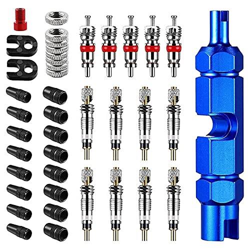 Baalaa Kit de herramientas de extracción de núcleo de válvula de bicicleta, herramienta de núcleo de válvula de bicicleta y coche, válvula Presta y Schrader, válvula de bicicleta