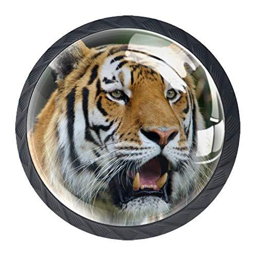 Perillas de Gabinete Redondas Majestad del tigre Perillas de Cajón 35mm Tiradores de Muebles con Tornillo Perillas Manijas para Armario Cajón Aparador Cocina 4 Piezas