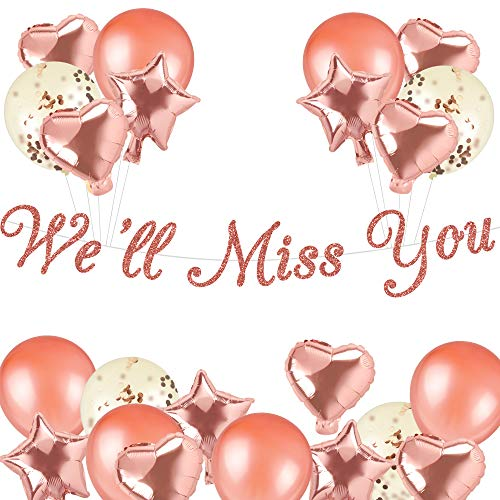 Rose Gold We Will Miss You Banner with Balloons Kit for Retirement Party Decorations, Graduation Party Going Away Party Office Work Party Farewell Party Decorations(Pre-Strung)