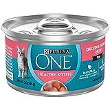 Purina ONE Grain Free, Natural Pate Wet Kitten Food, Healthy Kitten Chicken & Salmon Recipe - (24) 3...