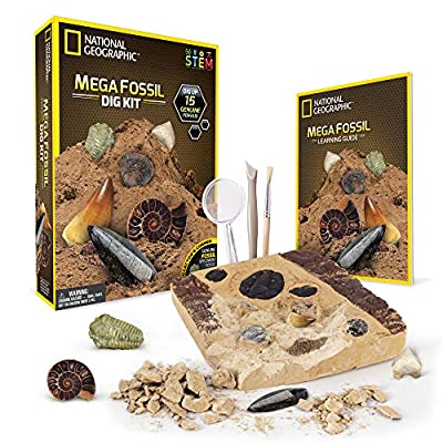 NATIONAL GEOGRAPHIC Mega Dig Kits - Gemstones or Fossil Specimen Dig Kits for Kids, Excavation Tools Included, Great STEM Activity for Curious Boys and Girls Who Love to Explore