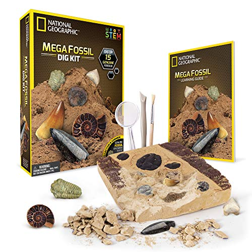 cheap NATIONAL GEOGRAPHIC Mega Fossil Dig Kit – Digging up 15 real fossils, including dinosaur bones and…