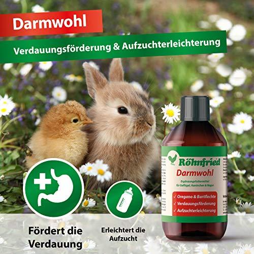 Röhnfried Darmwohl Nahrungsergänzung (250 ml) für Nager, Geflügel & Kleintiere, geförderte Verdauung & erleichterte Aufzucht, mit Oregano & Bartflechte - 5