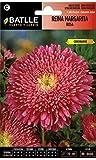 Semillas de Flores - Reina Margarita