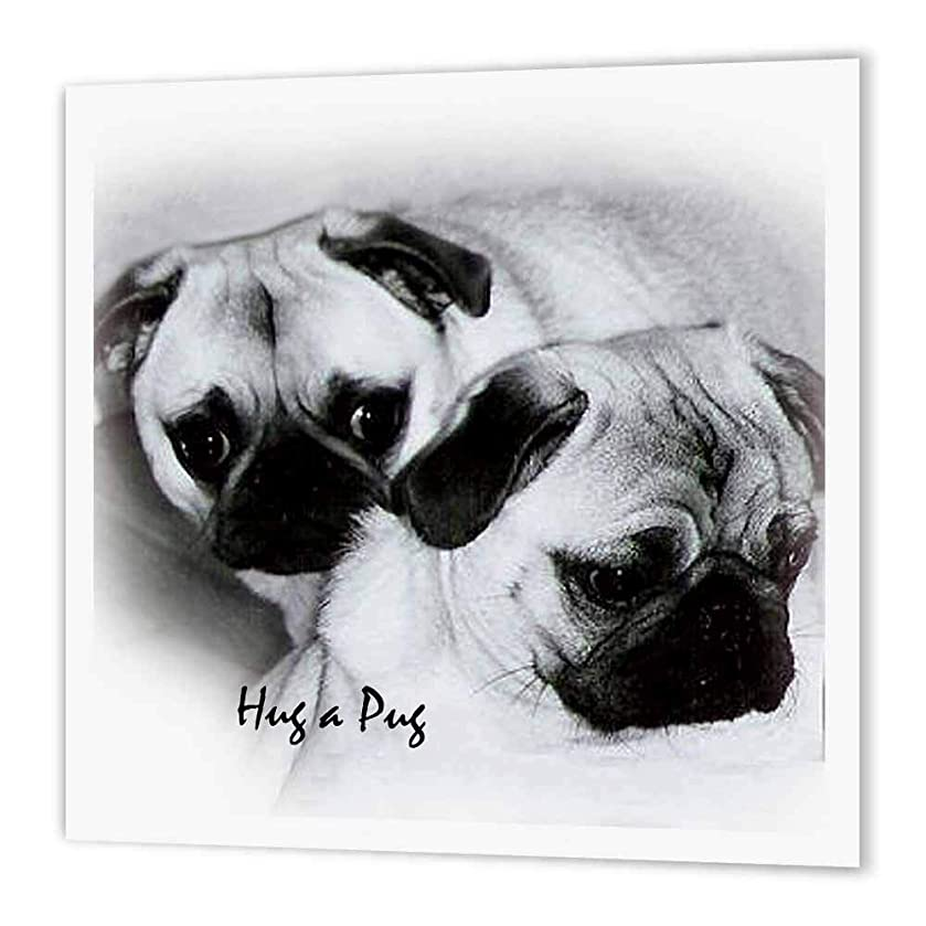 3dRose ht_1232_3 Hug a Pug Puppies-Iron on Heat Transfer Paper for White Material, 10 by 10-Inch