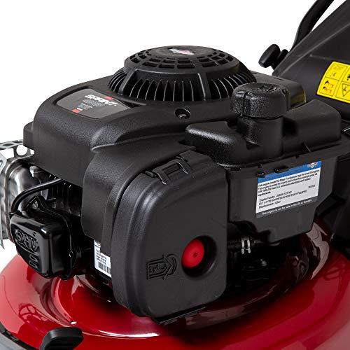 Sprint 420SP - Tagliaerba semovente a benzina da 42 cm con motore Briggs & Stratton 300E Series