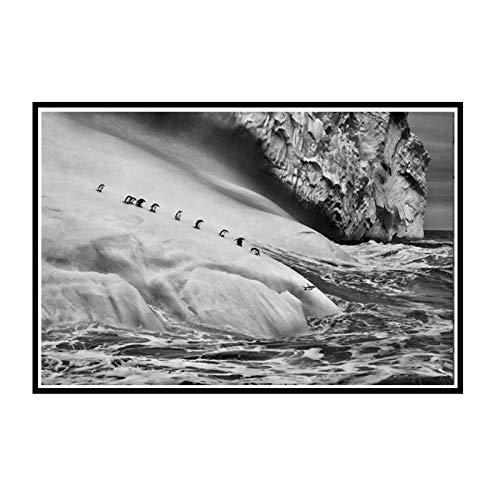 PDFKE Naturaleza Paisaje Marino Animales pingüinos Iceberg Cartel Monocromo Sala de Estar hogar Pared Lienzo Decorativo -50x70 cm sin Marco 1 Uds