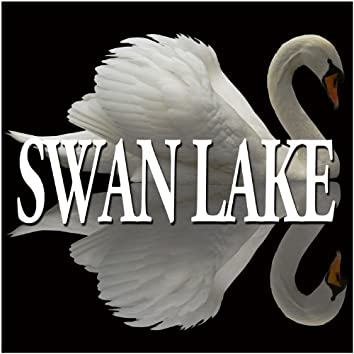 Tchaikovsky : Swan Lake & The Sleeping Beauty [Excerpts]