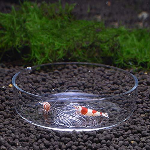 POPETPOP 1pc Garnelenfutter Schüssel durchsichtige Garnelenteller Lebensmittel Schüssel füttern Futterbecken für Haustier-Echsenfisch