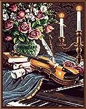 N/C Aint by Numbers Kits Pinturas acrílicas Set DIY Canvas Oil Painting Gift Kits Decoración del hogar- Flores y Guitarra 16 * 20 Pulgadas
