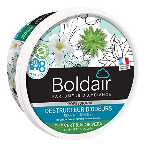 Boldair Gel Destructeur Thé Vert - Lot de 2