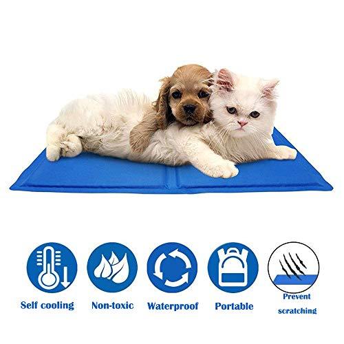 QMMYA Kühlmatte Hunde Strapazierfähige Kühlmatte Für Haustiere Ungiftiges Gel Selbstkühlende Kissen Ideal Für Hunde Katzen Im Heißen Sommer,M(50 * 40cm)