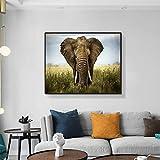 zgwxp77 Poster di Pittura su Tela di Animali Selvatici Elefante Nero e Stampa Foto d'Arte sul muro80x64cm Senza Cornice