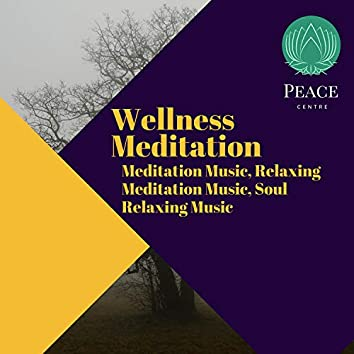 Wellness Meditation (Meditation Music, Relaxing Meditation Music, Soul Relaxing Music)