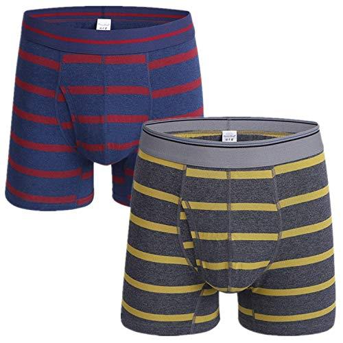 HaiDean Boxershort voor heren, 2 stuks, casual basic, moderne boxershort met lange pijpen, katoen onderbroek onder warme, zachte comfort, onderbroek open fly retroshorts