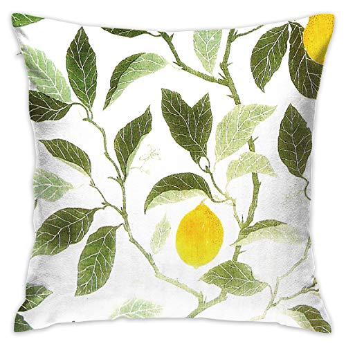 TERPASTRY Taie d'oreiller carrée décorative en Coton Doux pour l'extérieur Motif citronnier