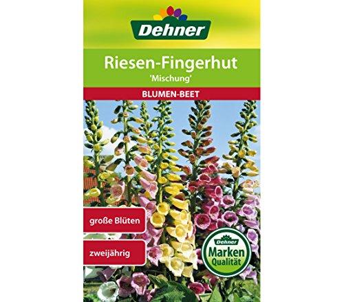 Dehner Blumen-Saatgut, Riesen-Fingerhut,