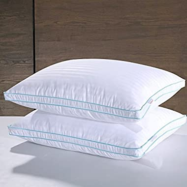 Homelike Moment White Goose Down Pillow Queen Feather Pillows Bed Pillow for Sleeping Standard Queen Size Pillows Set of 2 Gusseted