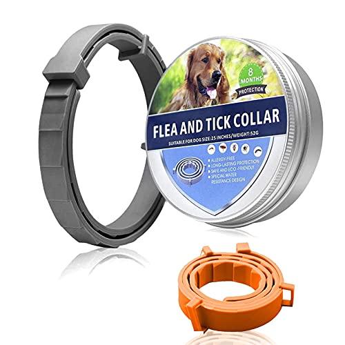 Collar para Mascotas, prevención de pulgas y garrapatas para Perros, Collar de Gato Natural, Ajustable Resistente al Agua Seguro para la Familia - 8 Meses de protección, Talla única