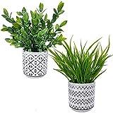 Set of 2 Artificial Potted Plants Potted Eucalyptus Plant Artificial Grass in Modern Concrete Plant Pots