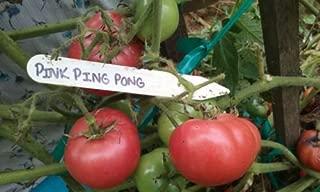 ping pong tomato