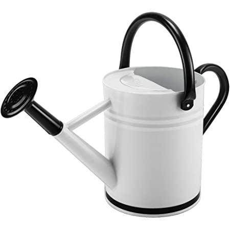 Metal Watering Can 1 Gallon for Outdoors Gardening, Galvanized Steel Watering Pot, Dairy Cow