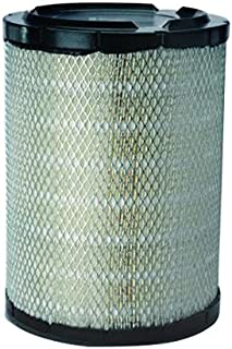 Donaldson P527484 Air Filter, Primary