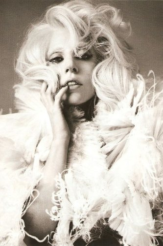bribase shop Lady Gaga super Music Star Nice Silk Fabric Cloth Wall poster stampa 20 inch x 13 inch A