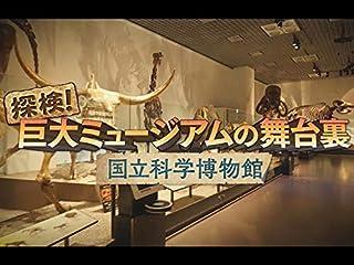 探検!巨大ミュージアムの舞台裏 ~国立科学博物館~(NHKオンデマンド)