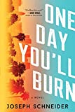 One Day You'll Burn (LAPD Detective Tully Jarsdel Mysteries Book 1)