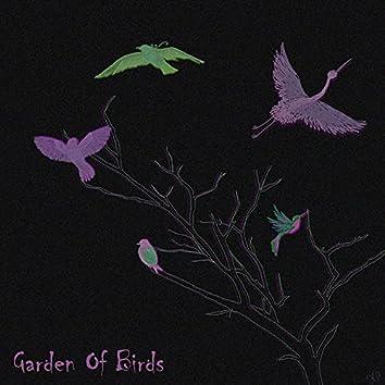 Garden Of Birds
