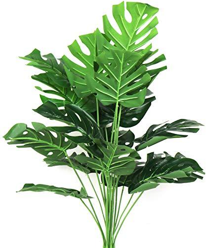 planta monstera de la marca Ollain