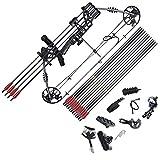 Funtress Arc à poulies 17'-29' Draw Longueur 20+LB Dessiner Poids avec Vitesse Max 310 fps 320 FPS...
