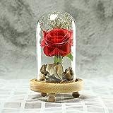 """Alaso Décoratifs Ornements,""""La Belle Et La Bête Rose"""",Rose Eternelle Romantique,avec Base en Bois,Idéal pour Amie Saint Valentin,Fête des Mères,Anniversaire,Mariage"""