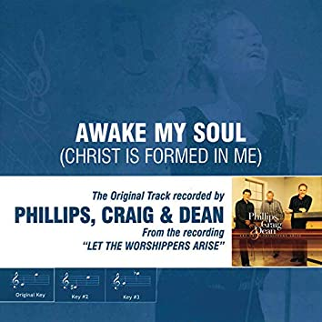 Awake My Soul (Christ Is Formed in Me) [Performance Track]