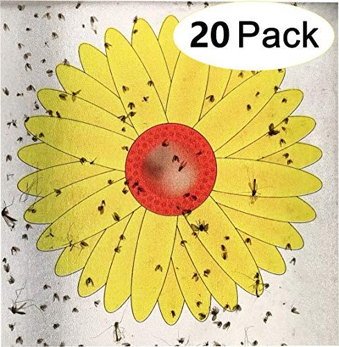 Plai 20 Stück Fensterfliegenfalle Aufkleber Fensterfliegenfalle zum Einfangen von Insekten