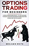 Options Trading for Beginners: A Crash Course in Simple Ready-to-Use Strategies to Create Your Passive Income Fortune by Investing in Forex and the Stock Market (Day Trading for a Living 2020, Band 1)