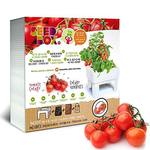 Seed Box - Kit D'Iniziazione All'Orto Urbano Cultívame Pomodorini